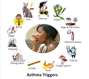 Asthma-Triggers