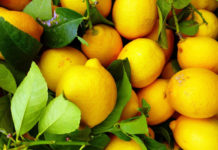 Lemon-chhilka-uses