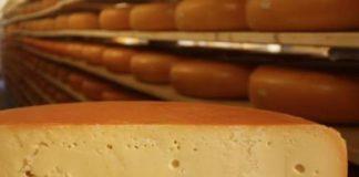 चीज़ कैसे बनता है