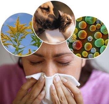 एलर्जी के लक्षण कारण व बचाव