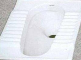 टॉयलेट साफ कैसे करें