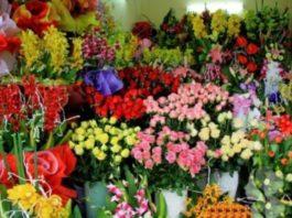 पूजा में फूल कौनसे लें